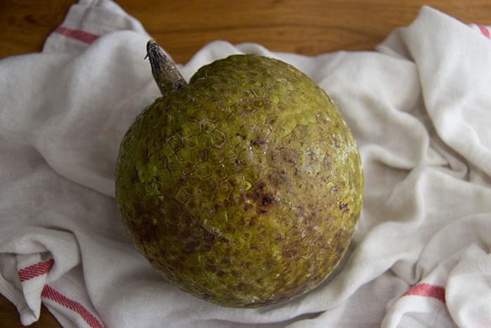 Breadfruit. How it looks