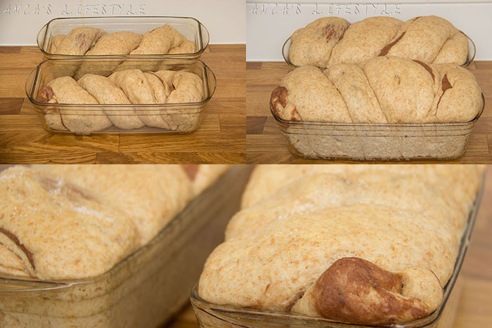 How to make Cozonac - leave the loafs to prove again