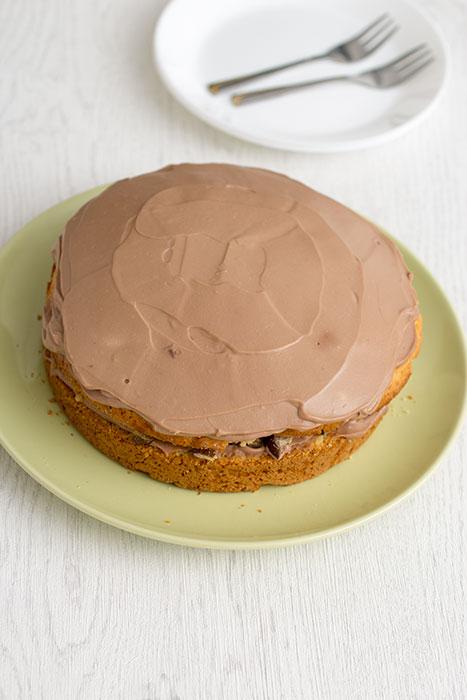 Chestnut and chocolate cake