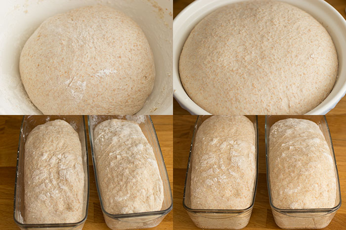 How to Bake with Fresh Yeast. Proving the dough